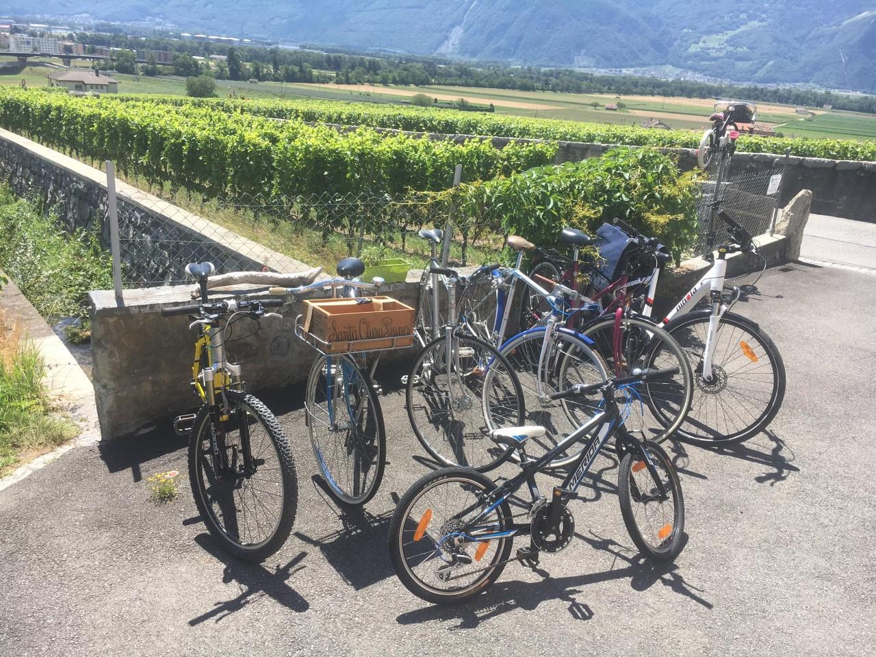 Flotte de vélo en location