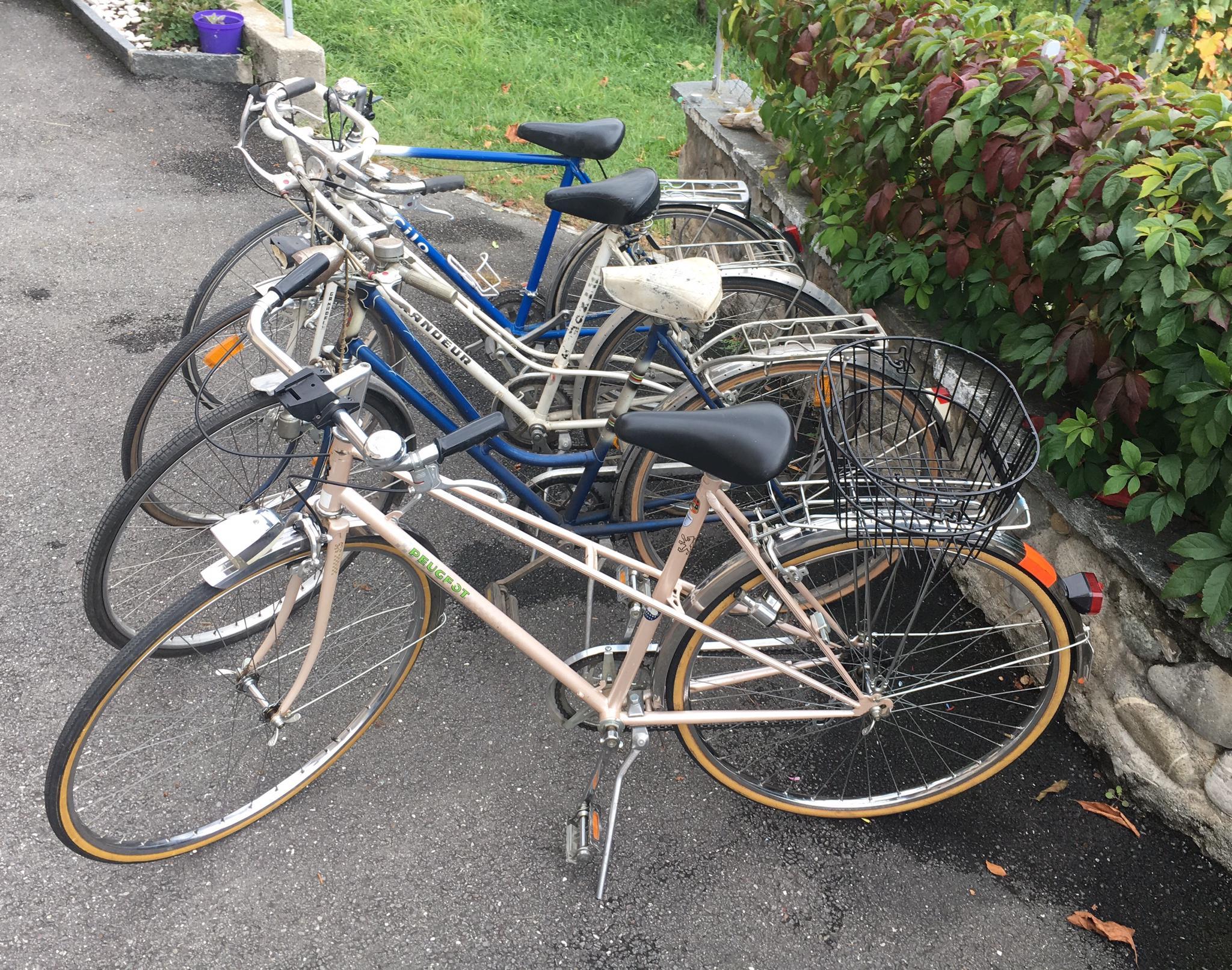 Divers vélos vintage